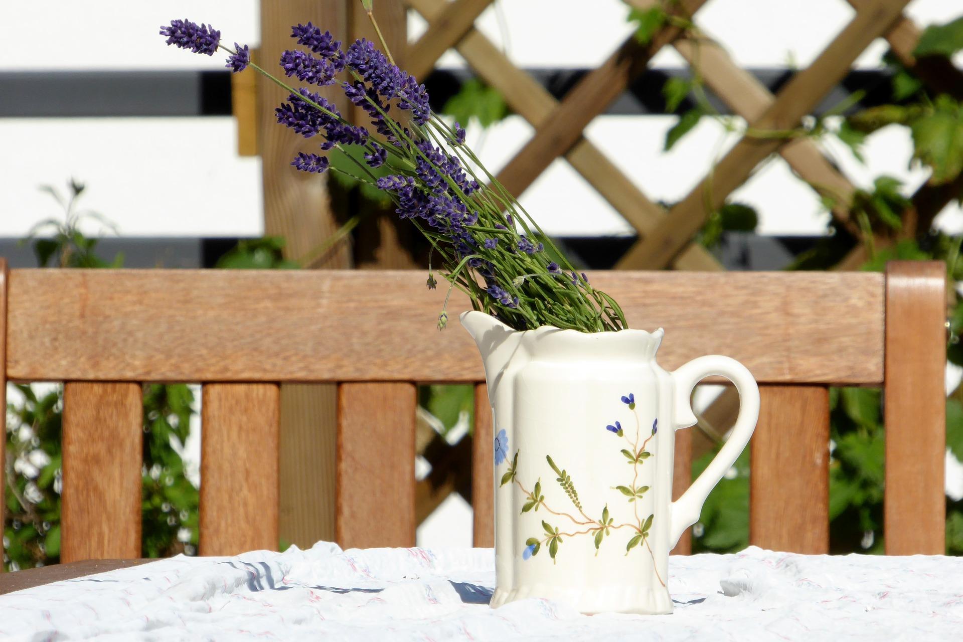 lavender-827463_1920